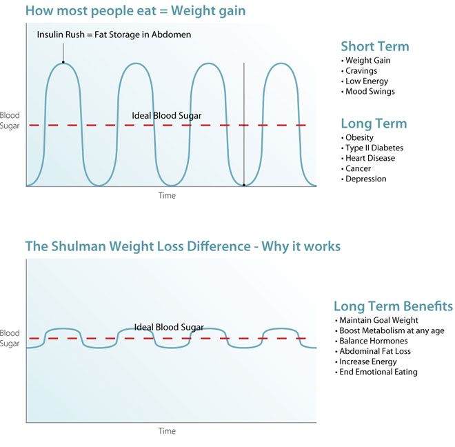 Shulman Weight Loss graph: why it works